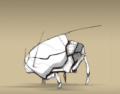 Insects / Aracs / Drawing