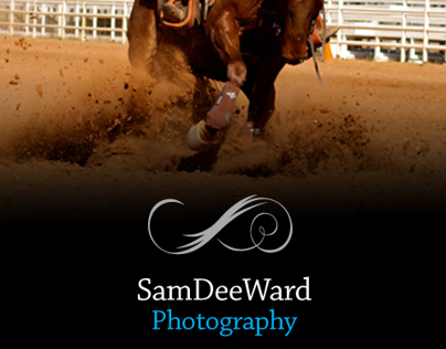 Western Equine Photography