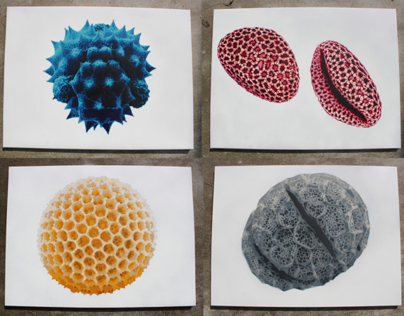 Pollen CMYK Stencils on Canvas