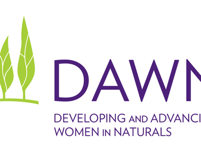 DAWN Network Logo