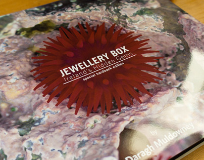 Jewellery Box - Irelands Hidden Gems