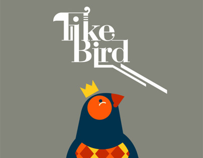 I like birds - Illustrations