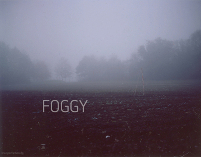 A foggy Polaroid morning