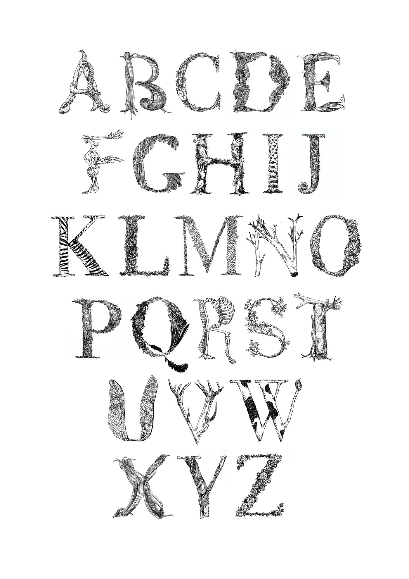 Typographie animale