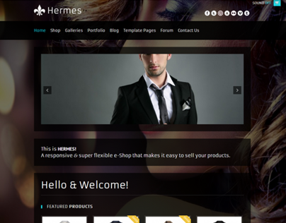 Hermes - Fullscreen e-Commerce WordPress Theme