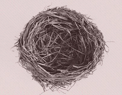 The Bird Nest- Illustrated Typeface