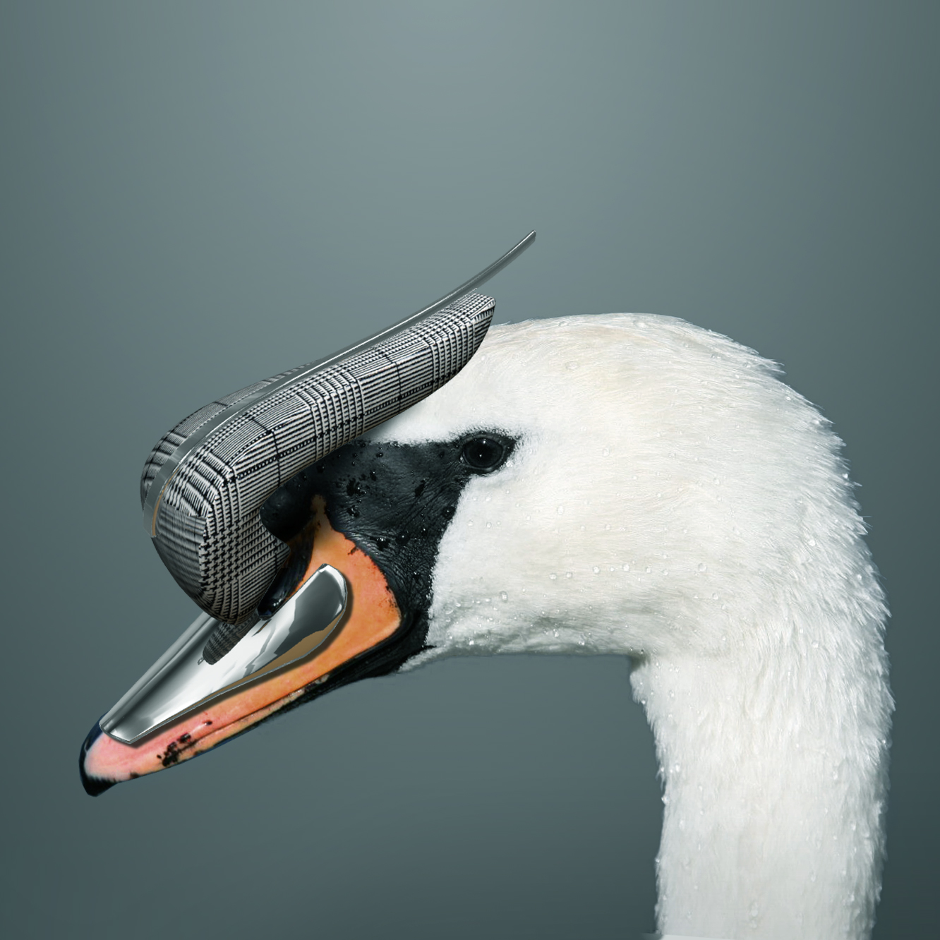 GRAYSISTER Swans hats collection,  A/W 2013/2014