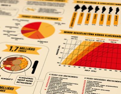 Obesity epidemic infographic / 2012