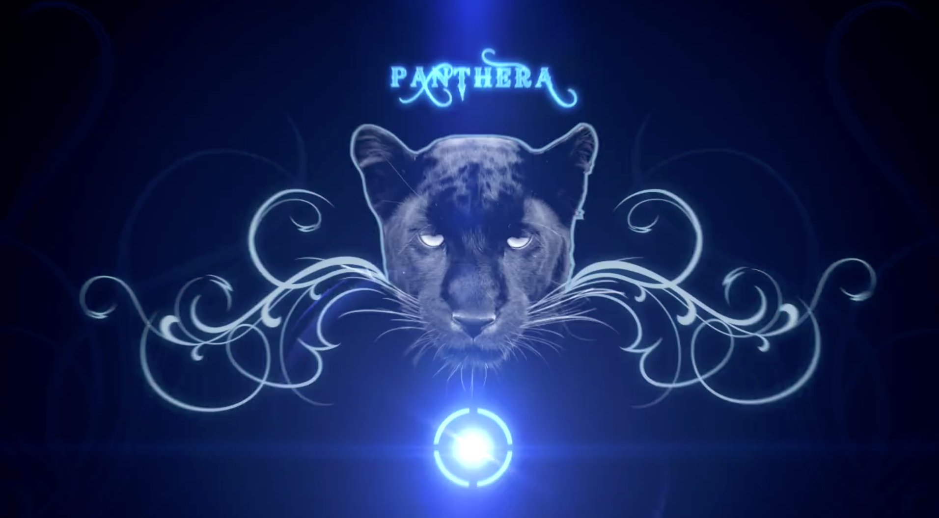 Genus Panthera - Into The Eye