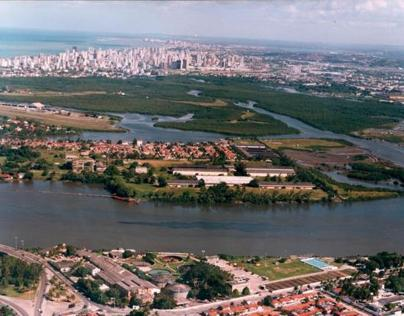 Recife e o Mangue