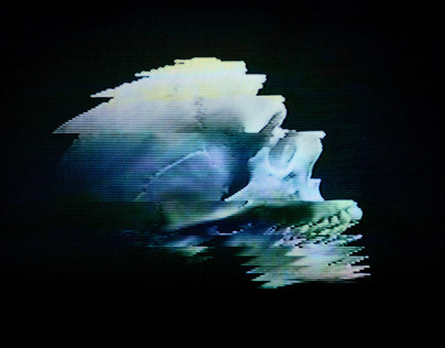 analog(one): analog glitch art (2012)
