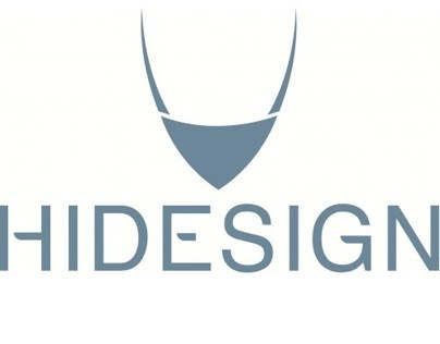 Hidesigns Industrial Designed Retail Stores
