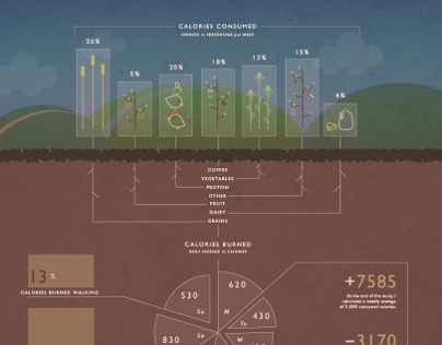 Course of My Calories | Infographic