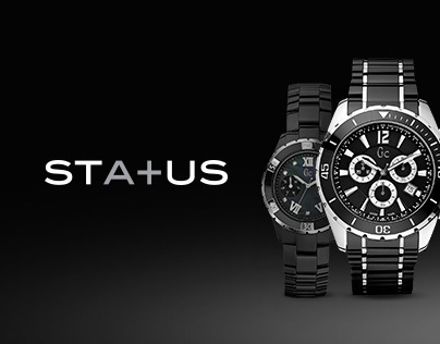 Status Accessories, Website & Online Store