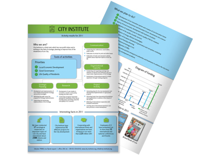 Brief Annual Report (City Institute, 2011)