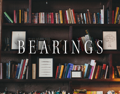 Original Illustrations for Bearings