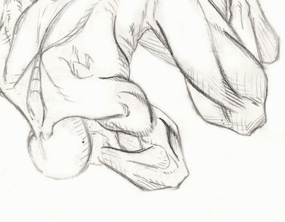 Dynamic Anatomy Study