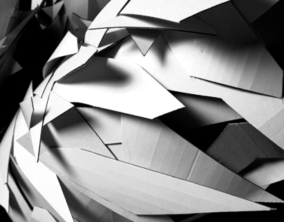 Experimental Paper Sculptures