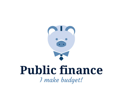 The Budget / Online financial game