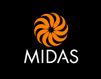 MIDAS: End of Year Review