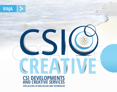 CSI DEVELOPMENTS AND CREATIVE SERVICE