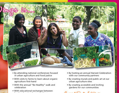 Roots and Wings Brochure