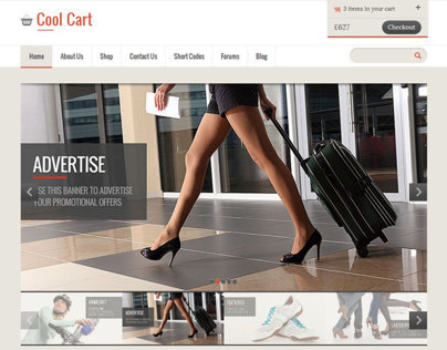 Cool Cart, eCommerce Wordpress Theme
