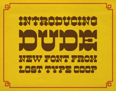 Dude! Lost Type Co-Op