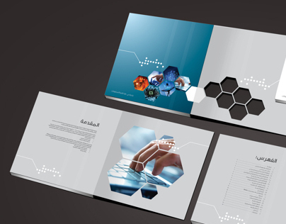 IT Strategy Brochure