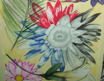 Flower Illustrations (Mixed Media)