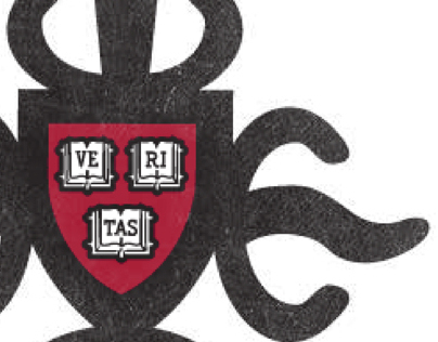 Harvard Africian Law Association Identity and Website