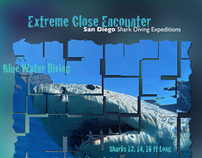 Posters, San Diego Shark Diving Expeditions