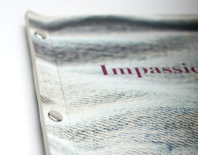Impassioned: Jeans, Concept Publication