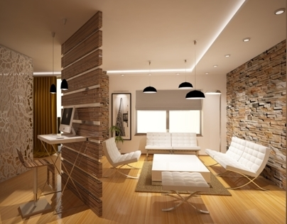 conceptual design of the apartment