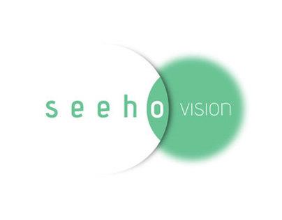 Seeho BI Proposal 2012