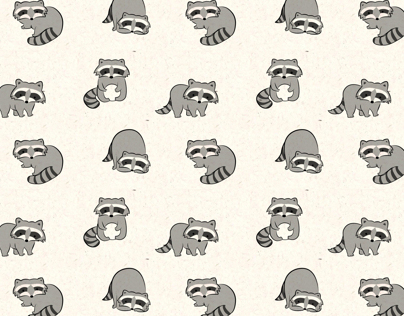 Raccoon Pattern