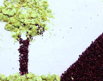 Vagabond Brewing Stop-Motion Commercials