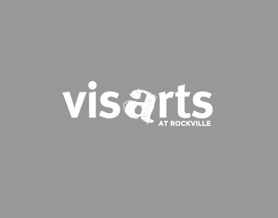 VisArts (Summer 2012 Internship)