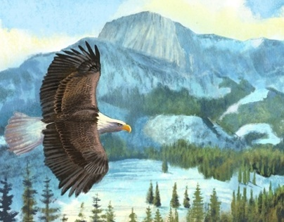 Winter Mountain Eagle - digital painting