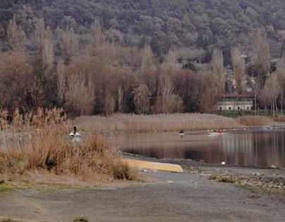 My Lake - photography