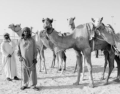 Camel Boys - B&W