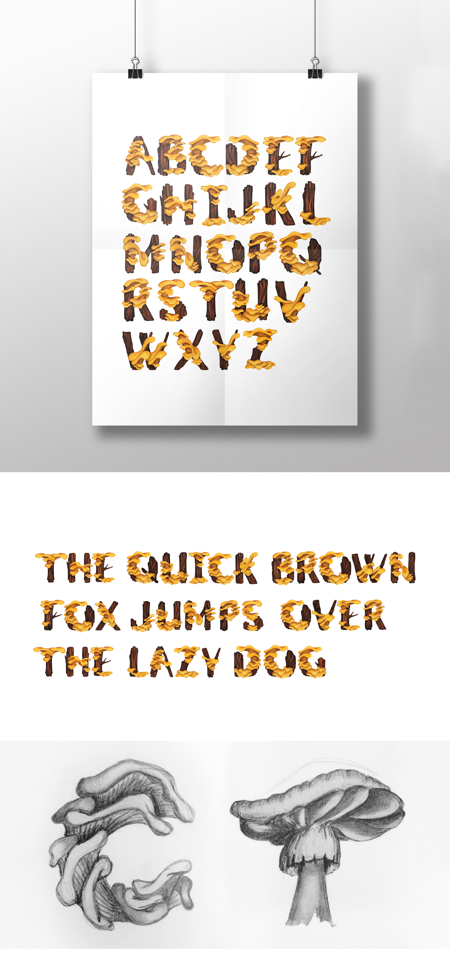 2D typography / Slow Life