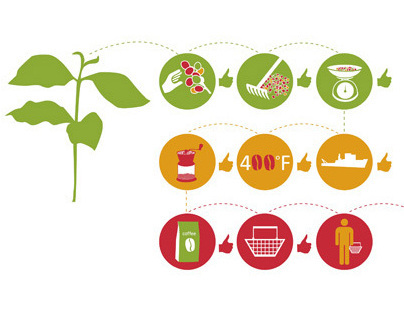 Information Graphics: Sustainability Standards