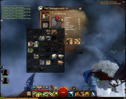 Guild Wars 2: User Interface Design Lead
