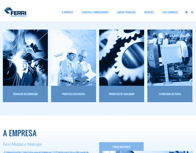 Website  // Ferri Metallurgy