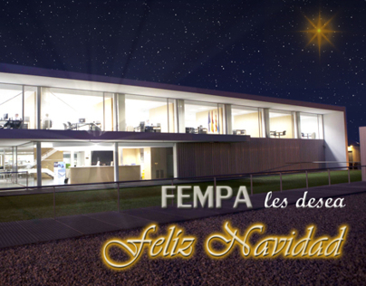 FEMPA Motion Christmas Card