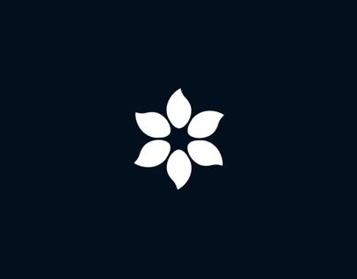 Cerealnet | Brand Design |