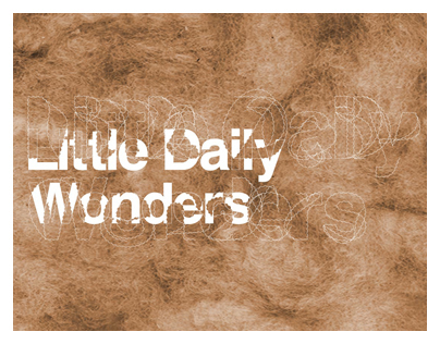 LITTLE DAILY WONDERS