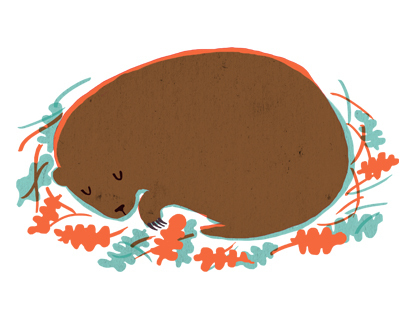 Groundhog - Editorial Illustration