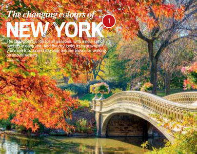 Lonely Planet- New York
